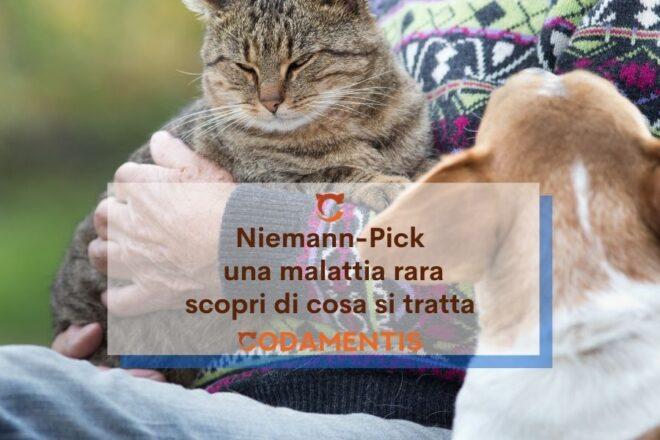 Niemann pick una malattia rara