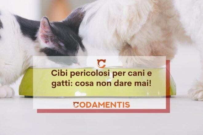 Cibi pericolosi per cani e gatti