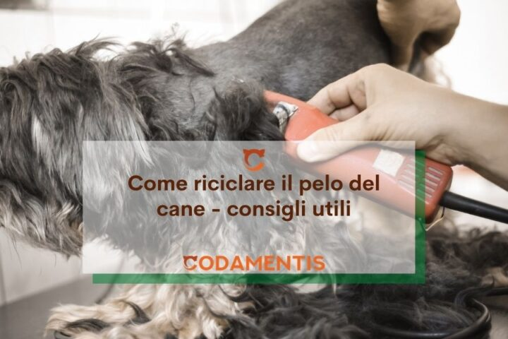 Come riciclare il pelo del cane