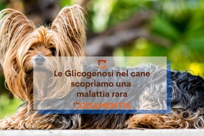 Le Glicogenosi nel cane