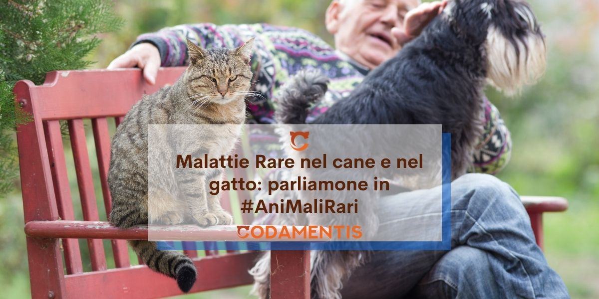 Malattie rare nel cane e nel gatto