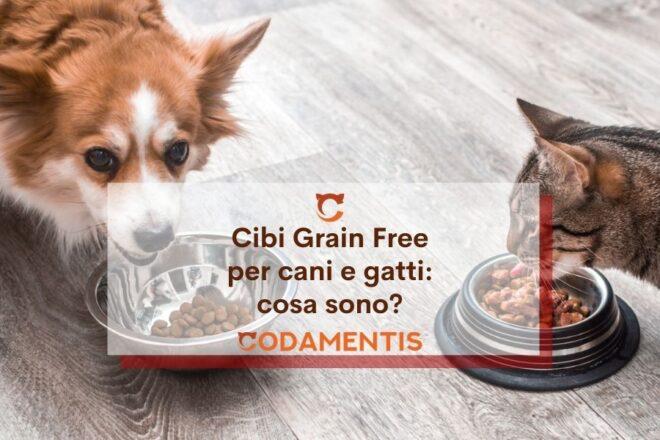cibo grain free cani e gatti