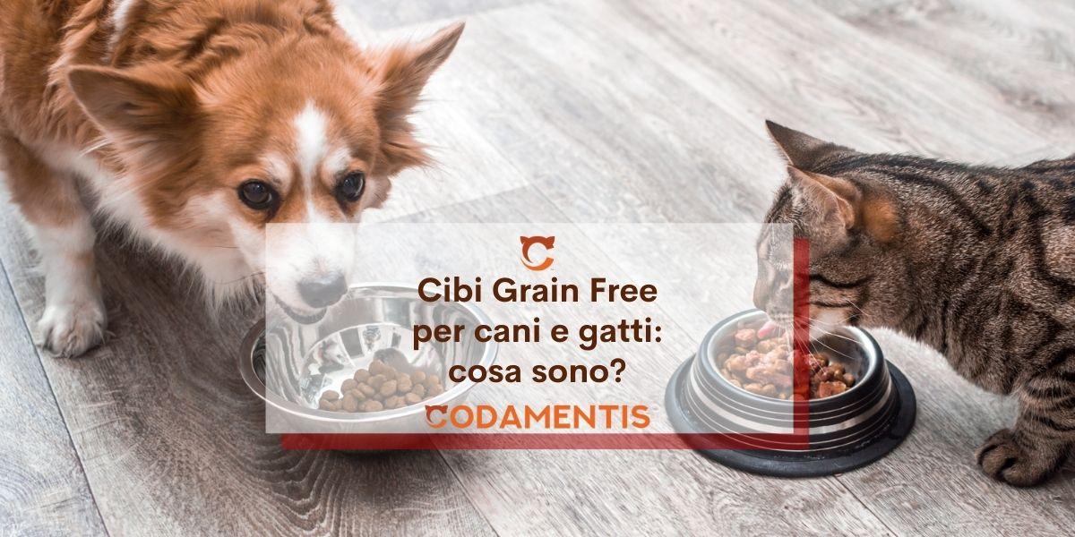 Cibi Grain Free per cani e gatti: cosa significa?