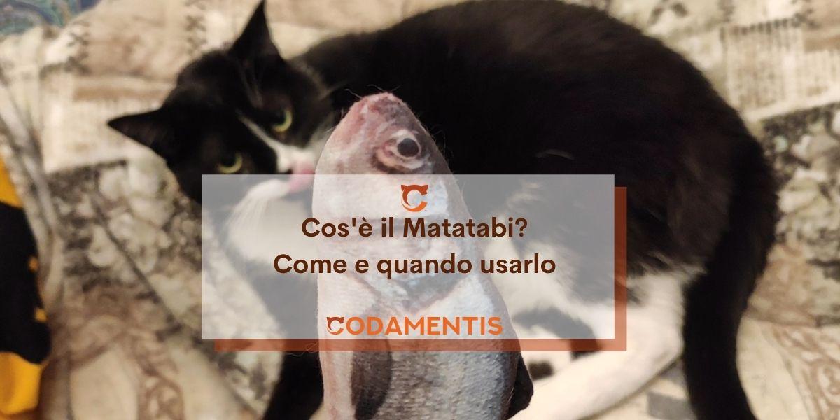 Cos'è il Matatabi?