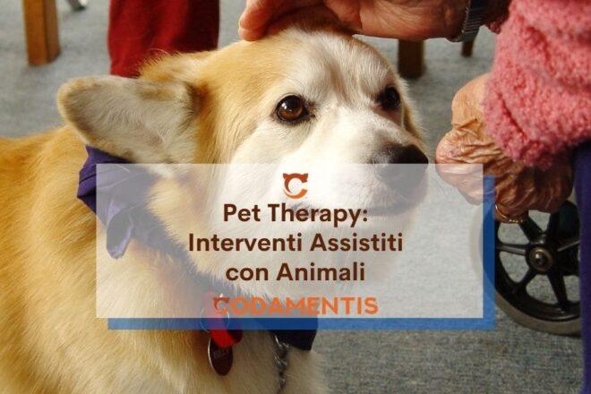 pet therapy cane gatto e coniglio