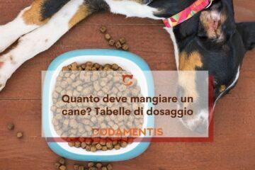 quanto deve mangiare un cane tabelle dosaggio