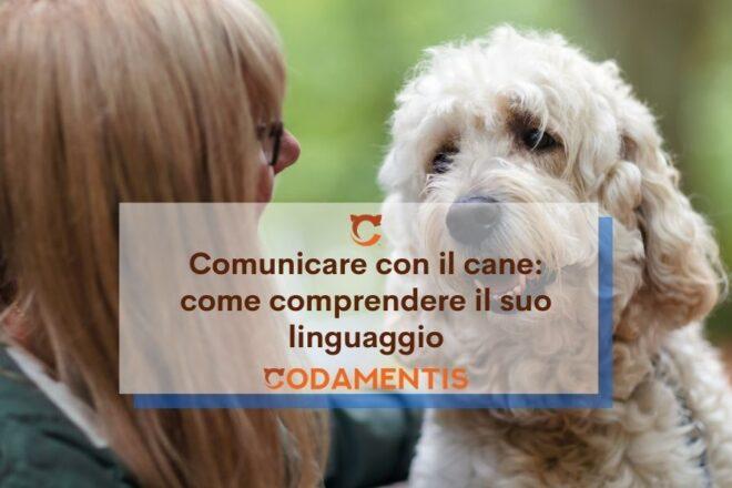 comunicare con il cane linguaggio