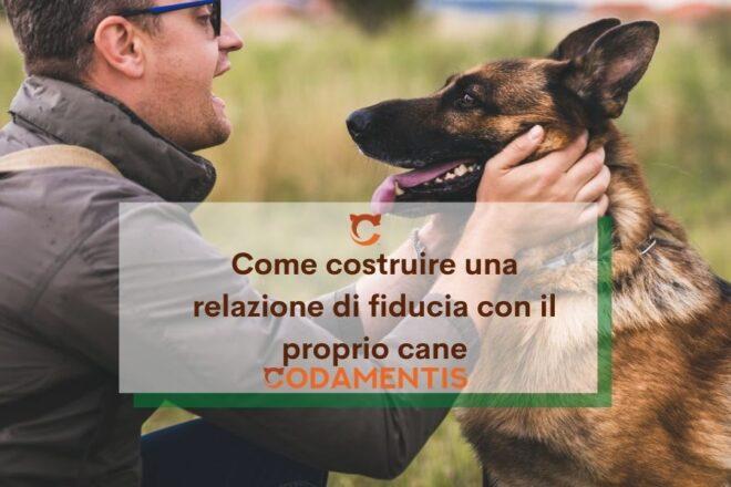 come costruire relazione di fiducia con il cane