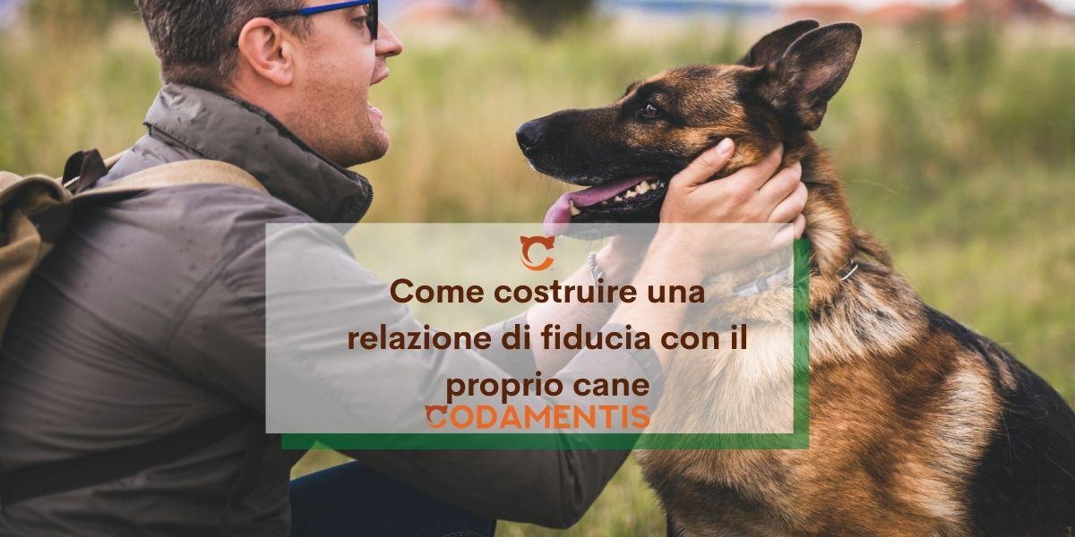 Come costruire una relazione di fiducia con il proprio cane